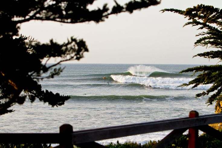 Santa Cruz to Host Best Minds in Ocean Conservation - SURFER Magazine