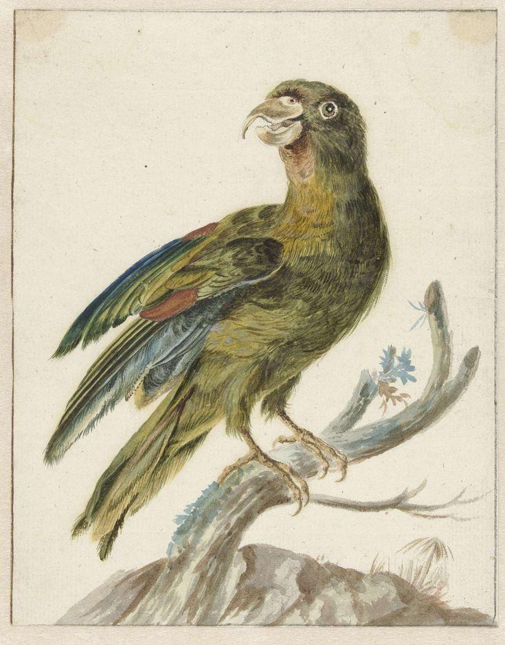 Parkiet, Jan Weenix, 1670 - 1719