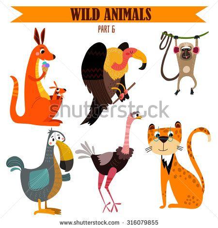 Animal Set Zoo Fotografie, snímky a obrázky | Shutterstock