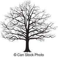 bare oak tree drawing bare tree illustrations and clip