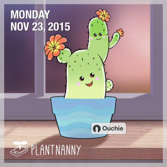 Say hello to my plant! It has absorbed 12,100 ml of water. Get yourself a plant at http://fourdesire.com/outer_link?url=http://itunes.apple.com/app/id590216134&l=en_ID&m=5652FCDF