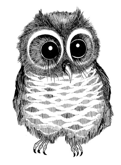 www.malingyllensvaan.comOwls Whimsy, Owls Www Malingyllensvaan Com, Illustration, Malin Owls, Owls Black, Malin Gyllensvaan, Owls Obsession, Drawing