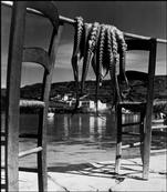 Herbert List GREECE. Ionian island of Corfu. 1938. Octopus.