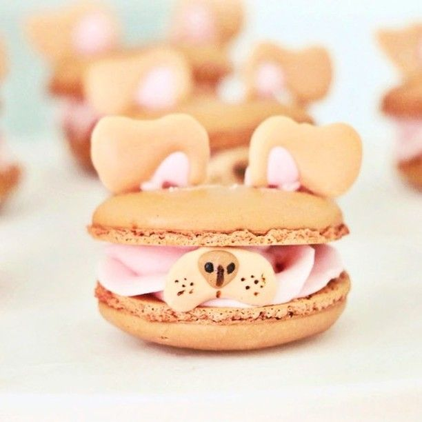 Of all the delicious snacks and desserts in the world, macarons are some of the fanciest. But none are quite as adorable as the macarons created by Meghan Rosko (known as nutmegandhoneybee on Instagram).