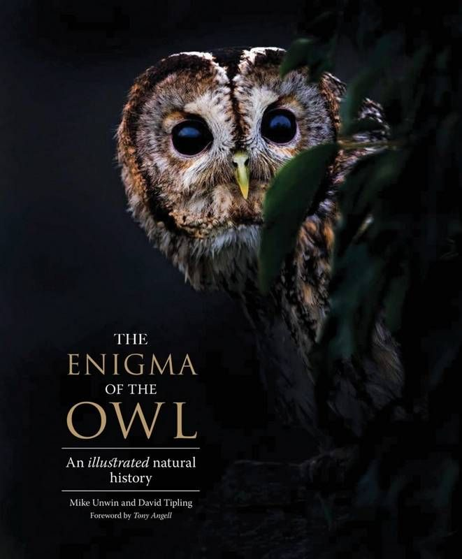 New Library Book just in. This lavishly illustrated book celebrates owls from every corner of the world and offers abundant details on fifty-three of the most striking and interesting species, from the tiny Elf Owl of southwestern American deserts to the formidable Blakiston's Fish Owl, the largest of all owls. (From Yale Press).