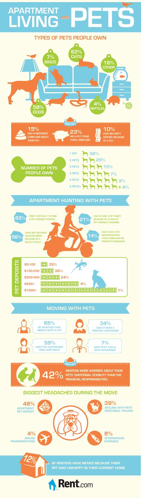 Apartment Living With Pets | Tips to Help Reduce Stress During a Move | Pawsitively Pets
