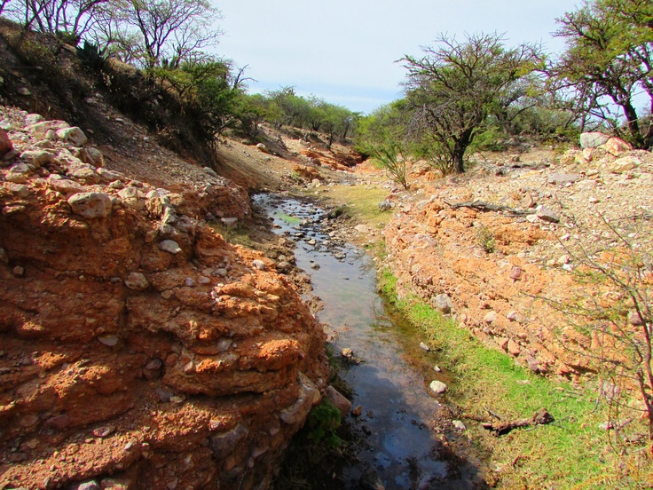 Bank Storage Run-Off, of a Ephemeral Stream. Located in Juan Aldama, Durango, Mexico