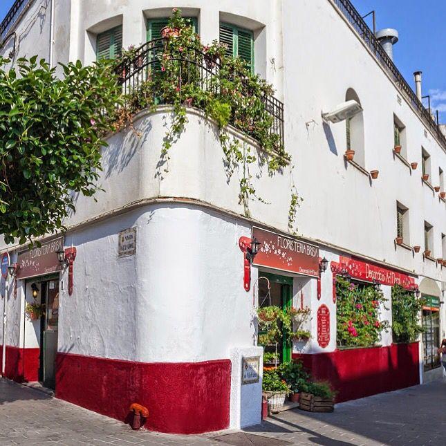 Flower Shop in Sitges   #floristeria #floweshop #localstore #sitges