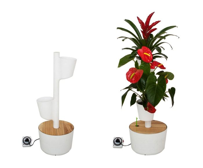 208 mejores imágenes de decorar con plantas y flores en pinterest