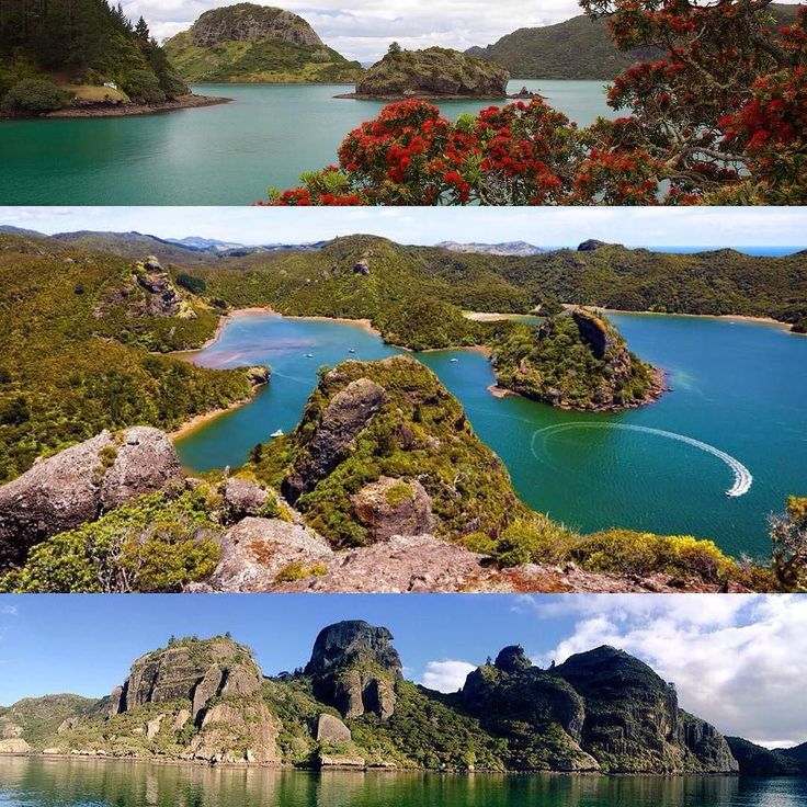 """Hidden gem"" is one of those expressions people bandy about much too casually. But for me it's the perfect description for Whangaroa Harbour #wheretostay #Wednesdaymood #TopOfTheNorth #Northland #NewZealand #itsTime2Go!  Love your work @whangaroawater"