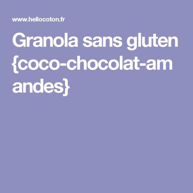 Granola sans gluten {coco-chocolat-amandes}