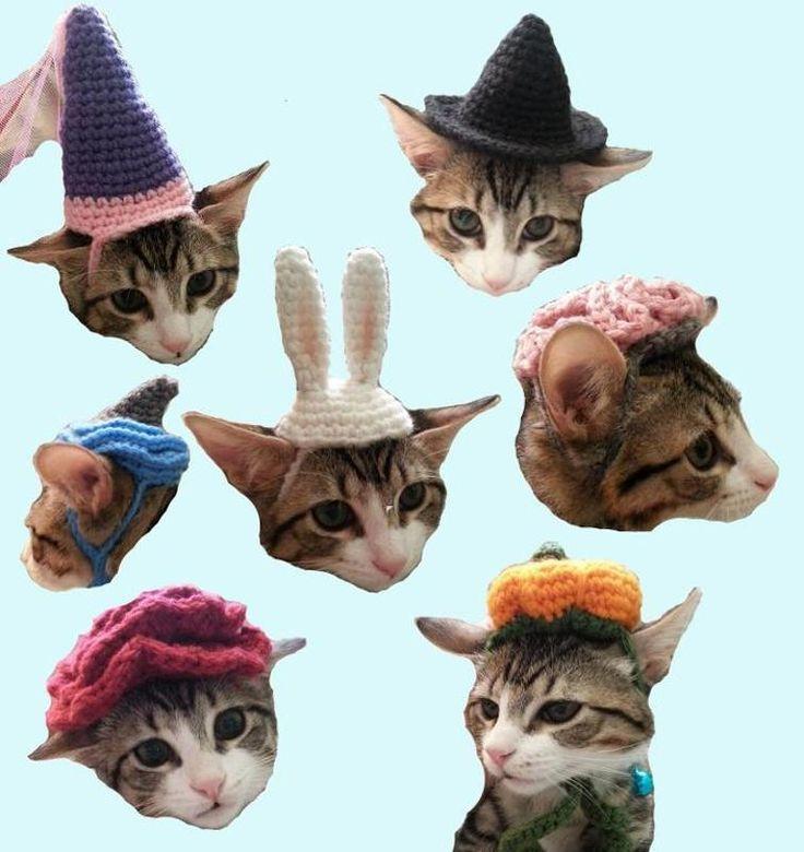 7 Cat Hat Patterns Shark Brain Witch PDF | Craftsy
