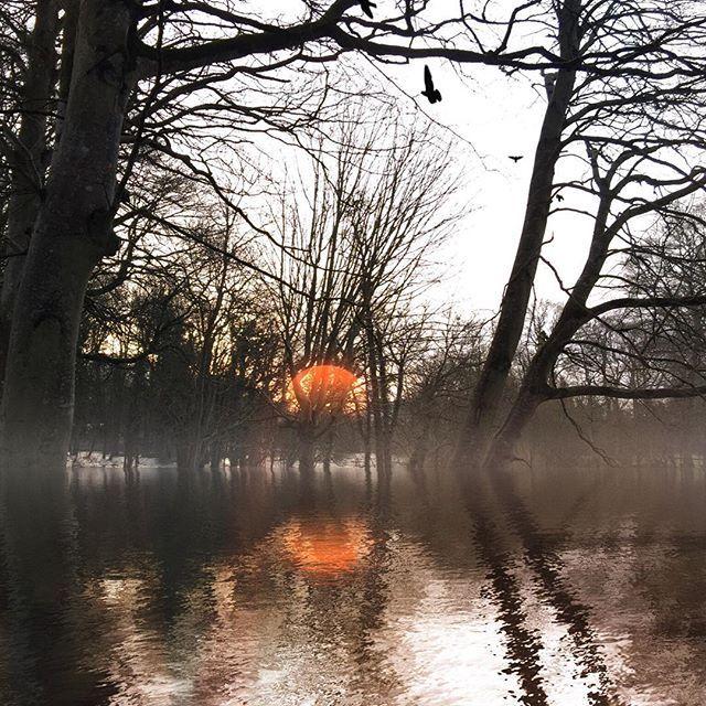 Simple joys. #reflectapp #DistressedFX #kildare #ireland #riverliffey