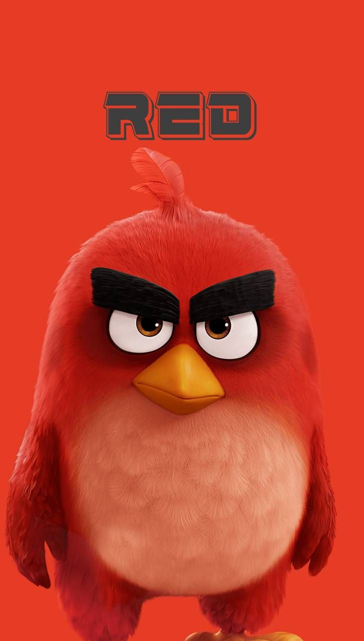 Pin By Buddy Burton Photography On Iphone Wallpapers Angry Bird Pictures Animated Emoticons Cartoon Wallpaper