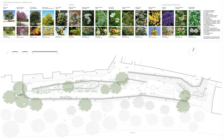 Vicovaro by alessandra centroni and luca peralta studio 19 for Garden design planting schemes