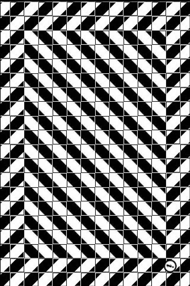 Best Optical Illusion Images On Pinterest Optical Illusions - Fascinating optical illusion disguises 12 black dots right in front of you