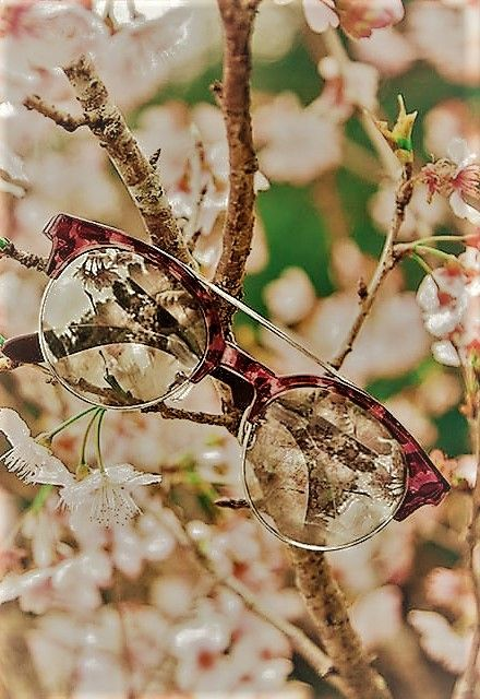 A natural look inspired by a natural world Glasses | Carrera http://www.smartbuyglasses.co.uk/designer-eyeglasses/Carrera/Carrera-CA6659-The-Bound-Maverick-003-309782.html