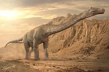 Titanosaurus (meaning 'titanic lizard' - named after the mythological 'Titans', deities of Ancient Greece) is a genus of sauropod dinosaur