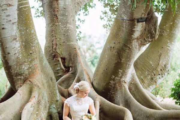 Lauren and Dardan had a romantic wedding at Sarasota's Selby Gardens with 100 of their closest friends and family.