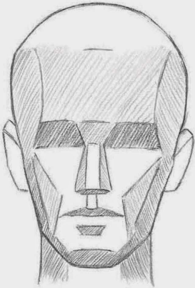 LEARNING THE PLANES OF THE FACE   Once you understand the basic structure of the head, you can simplify the complex shapes of the skull int...