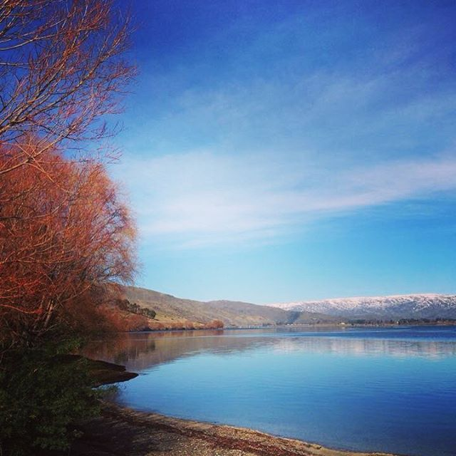 Lake Dunstan, Central Otago, New Zealand. Anywhere in Central is stunning, you look under a rock - and the view is still this good. Go to NZ.  #nz #mainland #centralotago #lakedunstan #cromwell #travel #visit #instago #instatravel #travelgram #fun #stunning #viewfromunderarock#kiwi #tourism #tourismnz