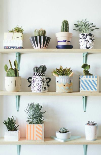 Beautiful Cool Multicoloured Pot Plants DIY Home Decor Home Accessory