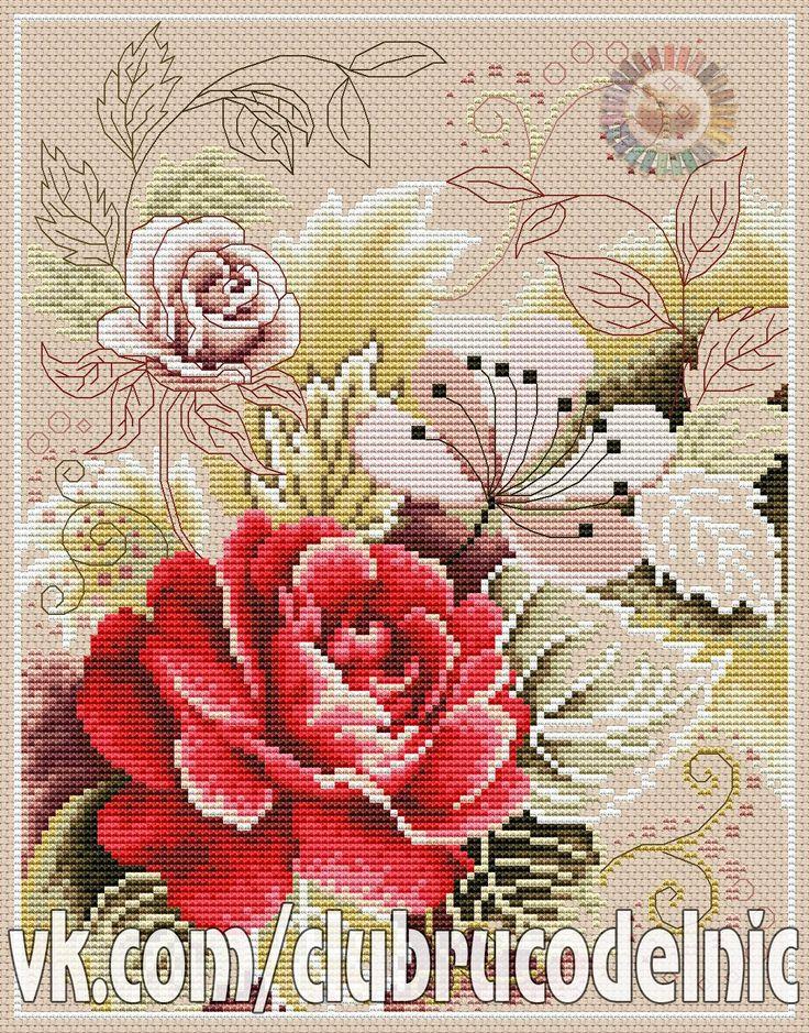 arabesque rose-1