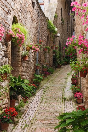 Spectacular Places: Flowered streets in Giverny, France