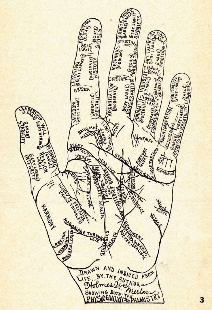 medium resolution of vintage and ancient hand diagram
