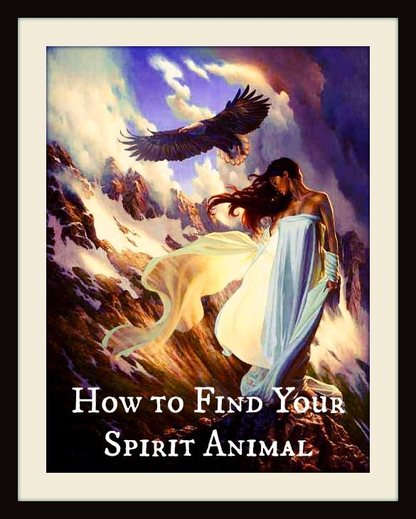 Seeking your spirit animal? We found some of the best ways to connect with the nature guide that is thought to protect and counsel you.  Get the steps to finding your spirit animal:
