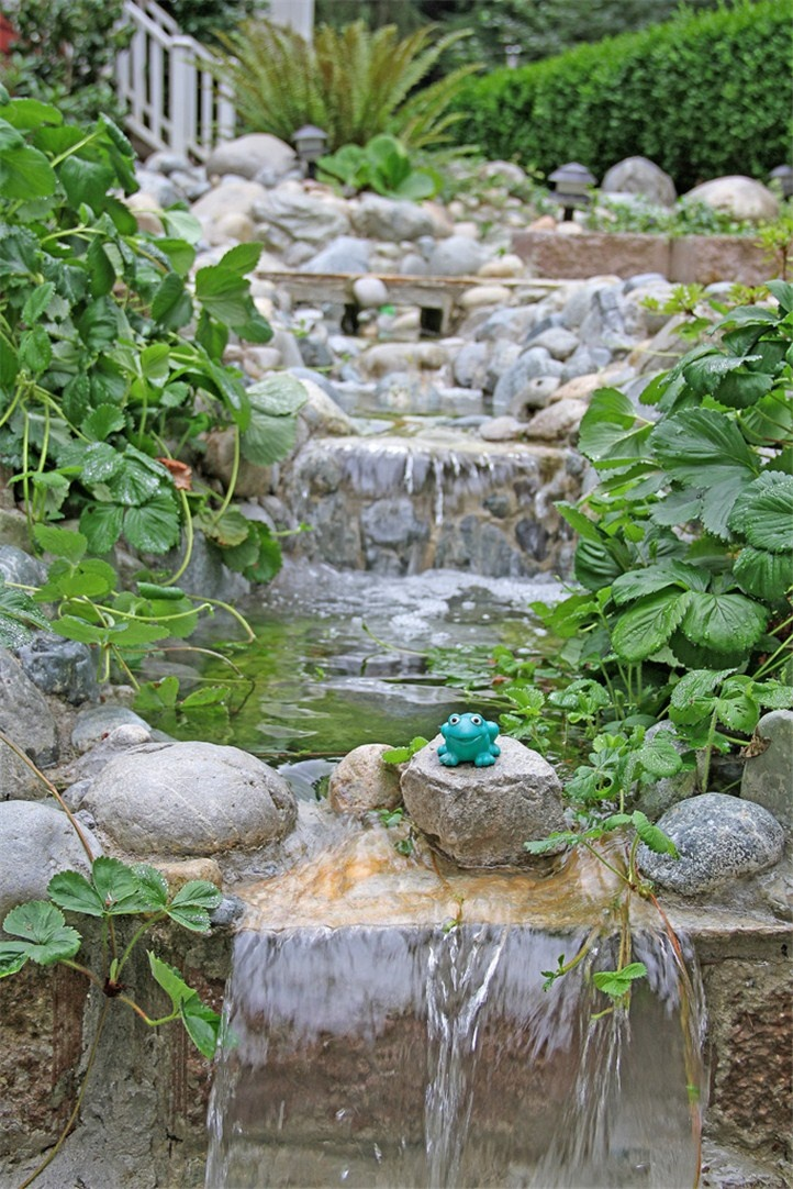 Water Feature Add Color Fluffy Plants Creeping Thyme To Grow Over Stone New Wa House For