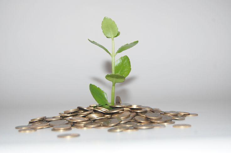 Sprawdzony, działający dochód pasywny dający stałe zyski od ponad dwóch lat. Uzyskaj darmowy raport