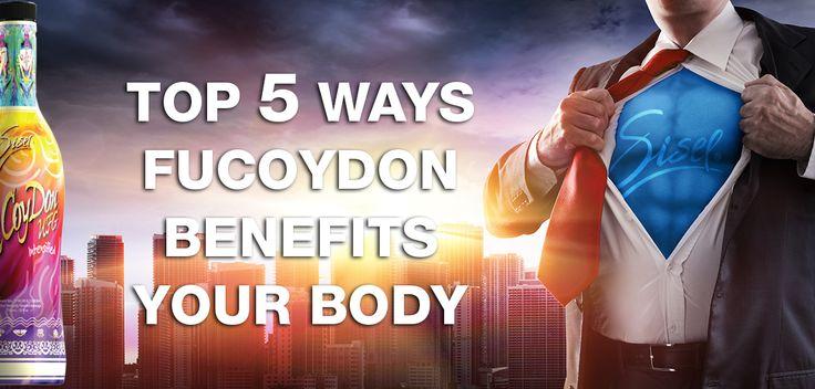 5 Factors That Make Fucoydon http://blog.siselinternational.com/5-factor-that-make-fucoydon/