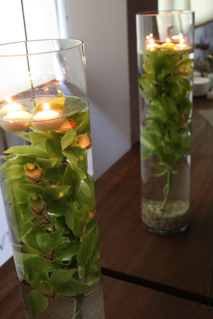 Kwiaty do restauracji i biur | Tulipanek