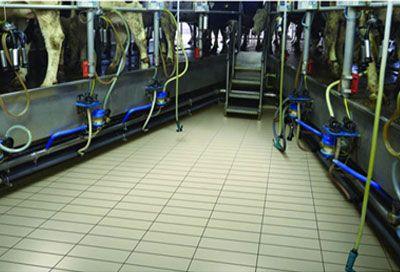 Heat Proof Ceramic Tiles & Fire Resistant Tiles Exporters