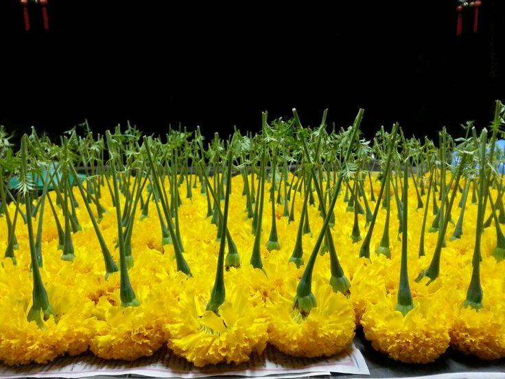 Organic Marigold Tea