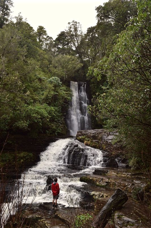 McLean Falls in the Catlins, New Zealand
