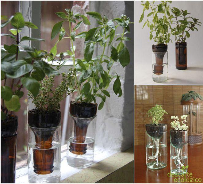 Artesanato Casa e Dicas: Vaso de planta auto-irrigável feito com garrada de...