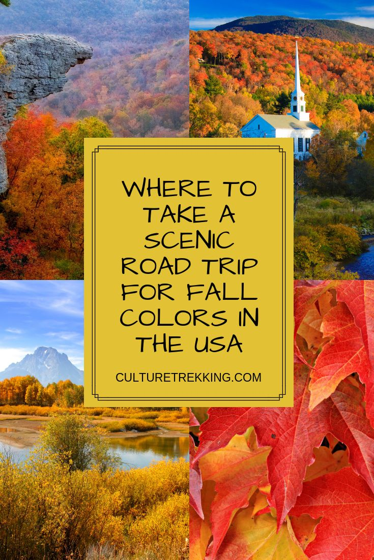 Where To Take A Scenic Road Trip For Fall Colors In The USA | Travel Guide to Arkansas | Road trip, Oregon travel, Travel new mexico