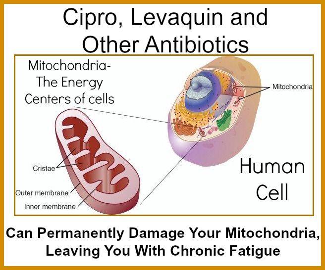 Moxifloxacin vs ciprofloxacin coverage one insurance