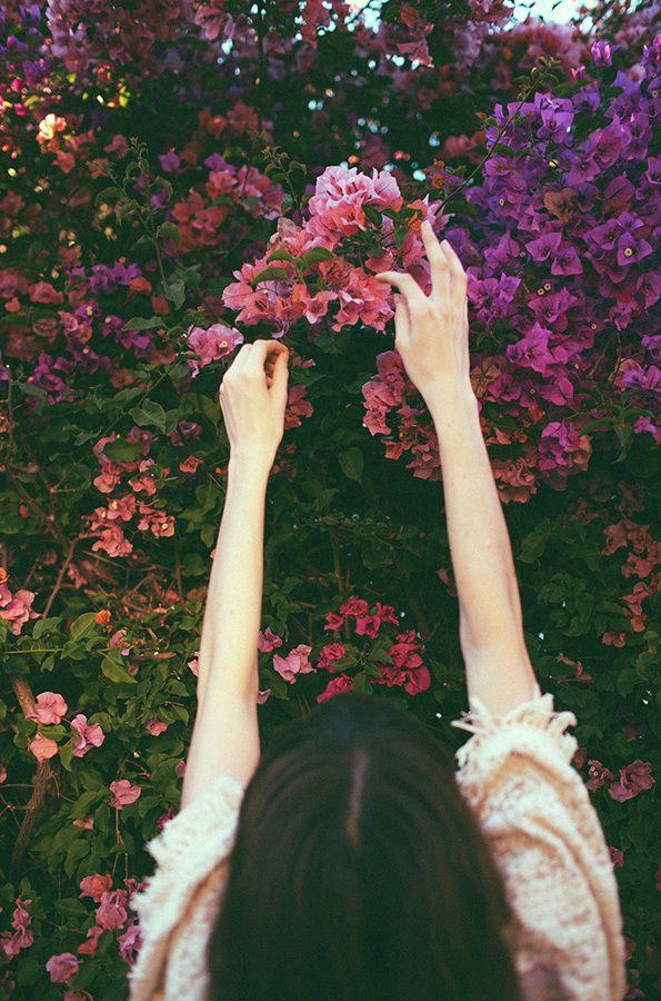 Chantal Anderson: Untitled