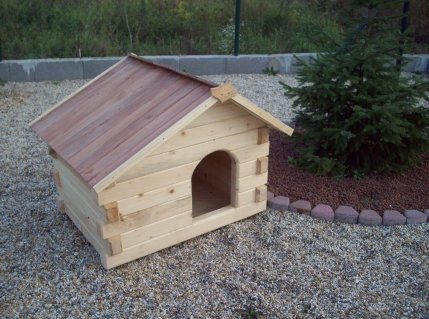 151 Best Images About Dog House On Pinterest