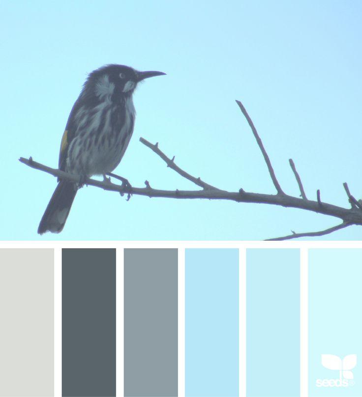Perched Tones - http://www.design-seeds.com/creatures/perched-tones-2