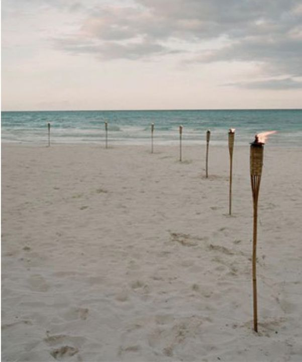 Rustic Beach Wedding / Wedding Style Inspiration / LANE