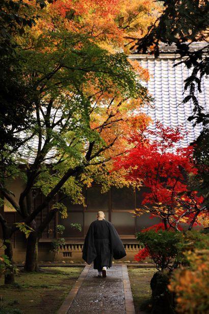 A monk at Heirin-ji temple, Saitama, Japan 平林寺 埼玉