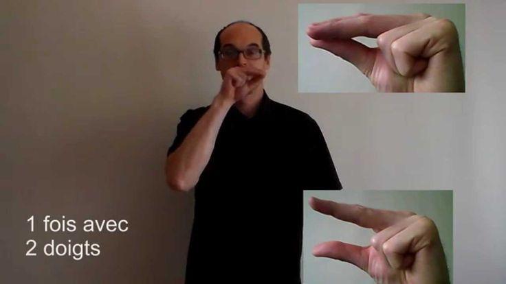 Les animaux en langue des signes française                                                                                                                                                                                 Plus