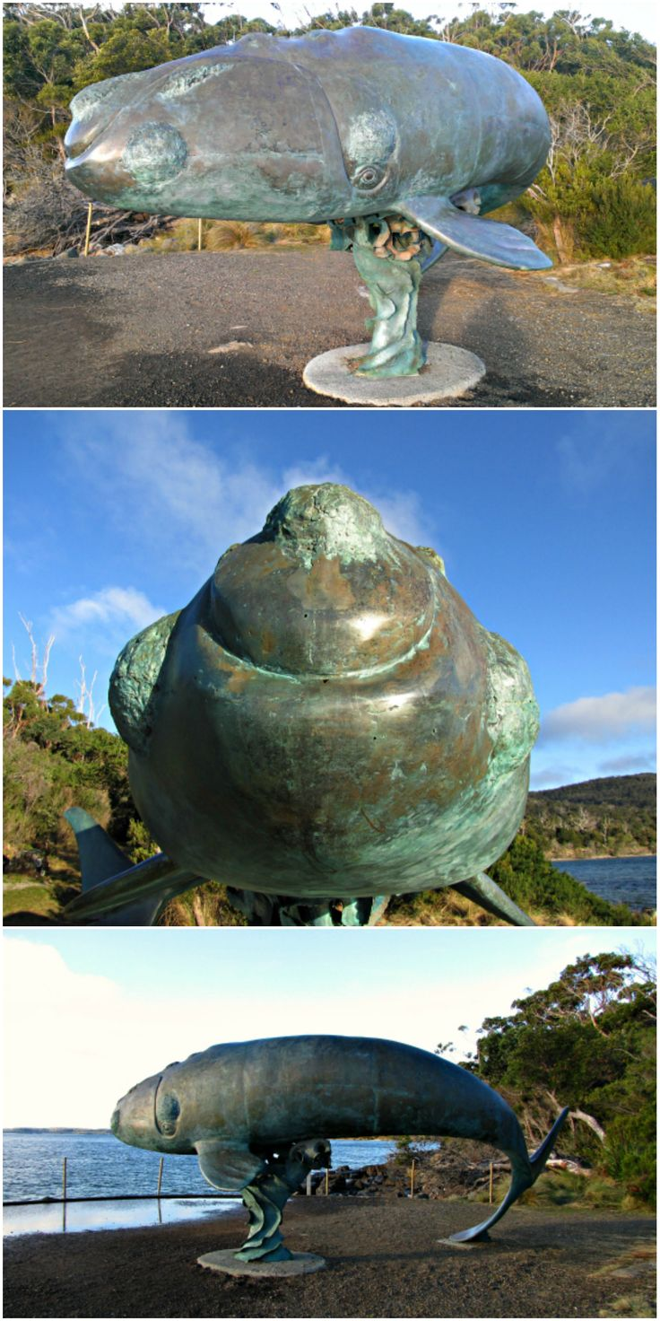 Bronze #sculpture of a young southern right #whale at Cockle Creek in far south #Tasmania. Article and photos for think-tasmania.com