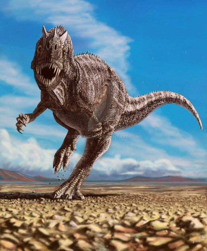 A ceratosaurus is looking at you...waiting for you to take the gum like god ima just watch some pyrocynical now
