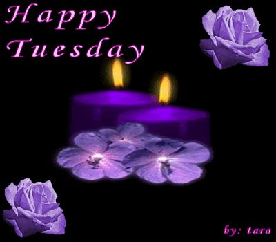 Happy Tuesday cute day days of the week tuesday weekday tuesday greeting tuesday gif