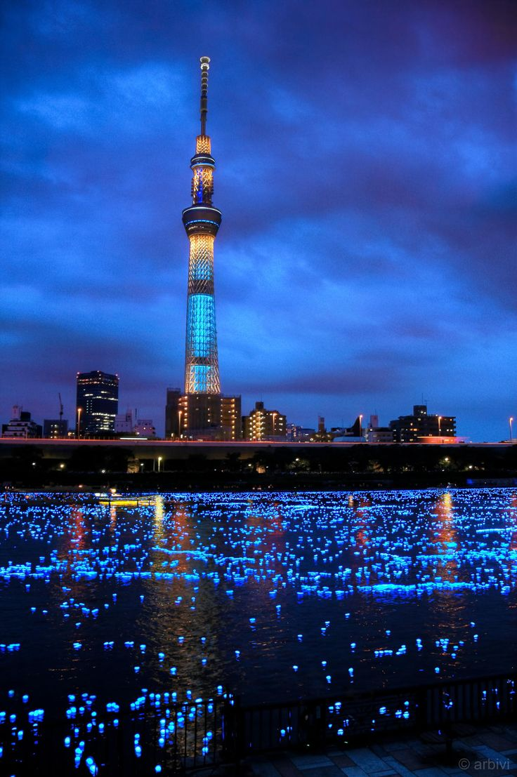 Sumida river was filled with millions of solar-powered LED light balls to show how it looks like years ago when fireflies are still present in the area. (Taken during Tokyo Hotaru Festival 2013)